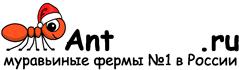 Муравьиные фермы AntFarms.ru - Новороссийск